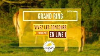 Grand Ring - 25.02.2018
