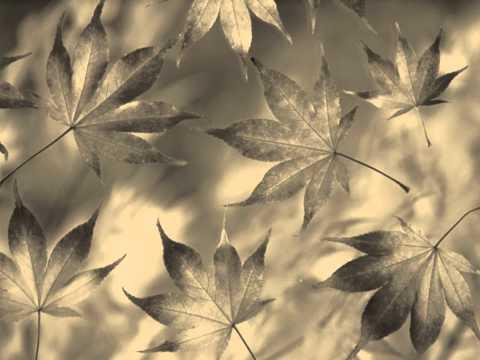 Jackson Browne-Fountain of sorrow with lyrics