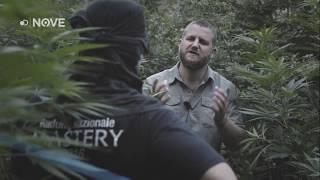 CLANDESTINO- La mafia albanese | Famiglia | NOVE