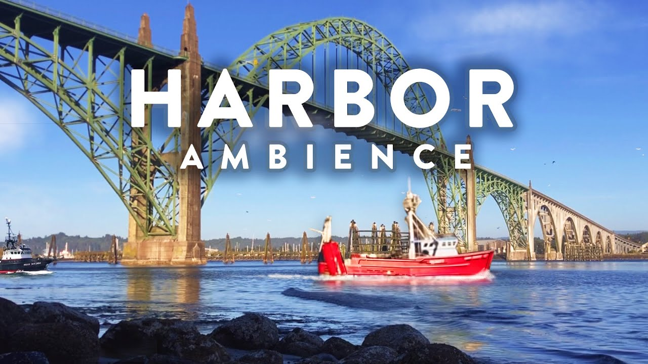 Relaxing Harbor Ambience - 8 hour Harbor Soundscape of Gentle Waves, Birds, and Ambient Ocean Sounds