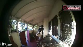 Melrose Action Neighborhood Watch Trespass 2017
