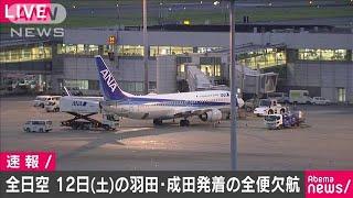 全日空 12日に羽田・成田発の国内線全便を欠航(19/10/10)