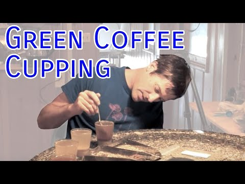 Green Coffee Cupping