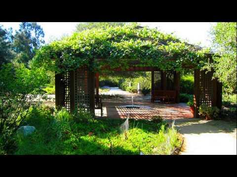 Rancho santa ana botanic garden youtube - Rancho santa ana botanic garden wedding ...