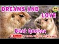 TOP 25 DREAMS AND LOVE QUOTES - Best Dream Quotes