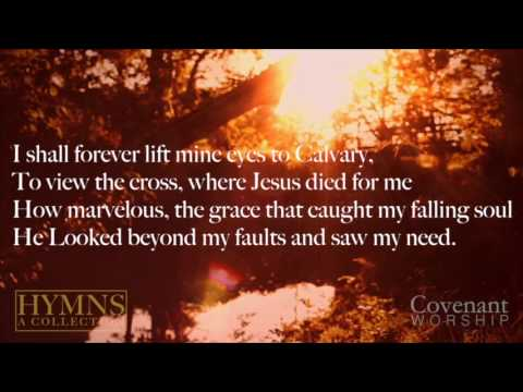 He Looked Beyond My Fault // Lyric Video