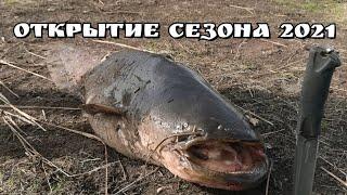 Огромный сом на перемет Открытие сезона 2021 Поселок Маяк Хабаровский край Рыбалка в начале мая