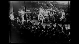 The Clash - LIVE IN 1977 [VIDEO]