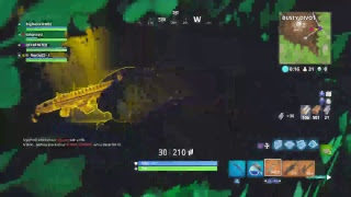 Geting a win with dak/Best player on fortnite