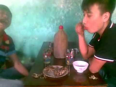 Thanh hóa-A dù-dan chơi°• vip.com