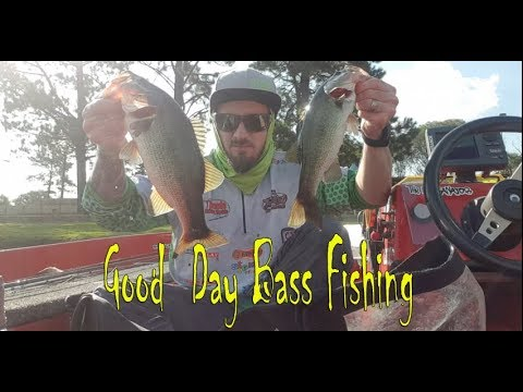 Great Day Out Bass Fishing At Rietspruit Dam