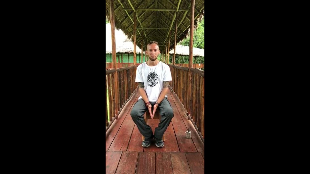 Ayahuasca Retreat Ayahuasca Retreats Testimonials   Kawsay