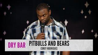 Pitbulls vs. Bears. Corey Rodrigues