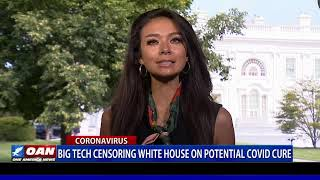Big Tech censoring White House on potential COVID-19 cure