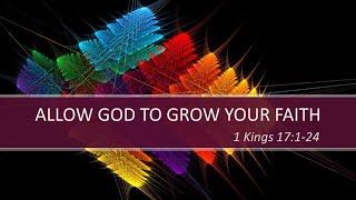 Allow God to Build Your Faith
