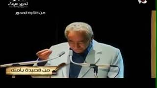 محمود غزالي