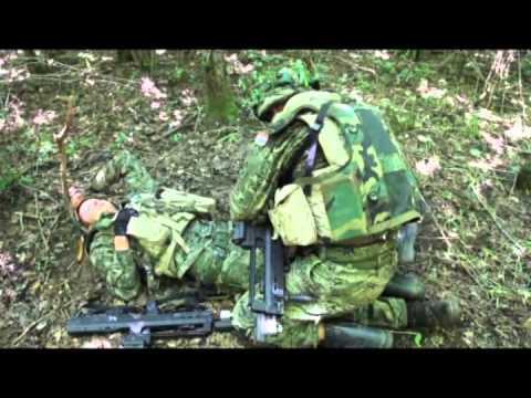 Oružane snage RH