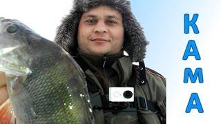 Зимняя рыбалка на судака: Секреты ловли судака зимой