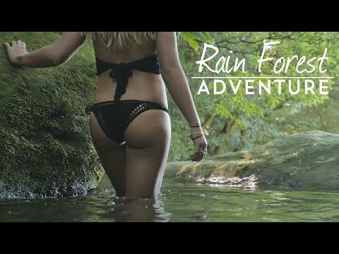 Rainforest Adventure Gerringong