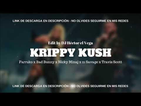 REAGEREN OP Farruko, Nicki Minaj, Travis Scott - Krippy Kush (Remix) ft. Bad Bunny, Rvssian