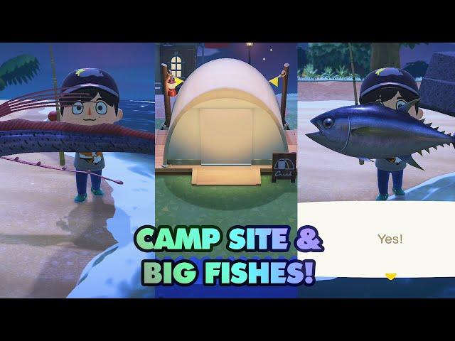 Campsite & Big Fish! - Animal Crossing New Horizons