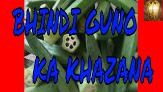Bhindi guno ka khazana thumbnail