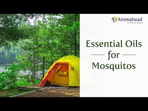 essential-oils-for-mosquitos