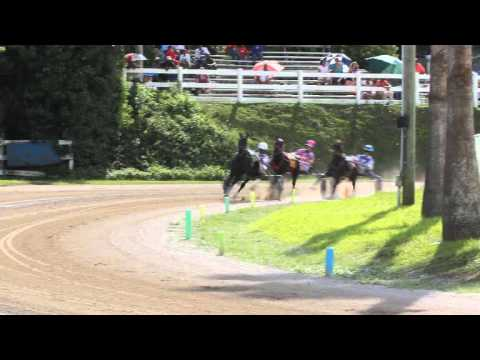Harness Pony Racing Bermuda October 23 2011