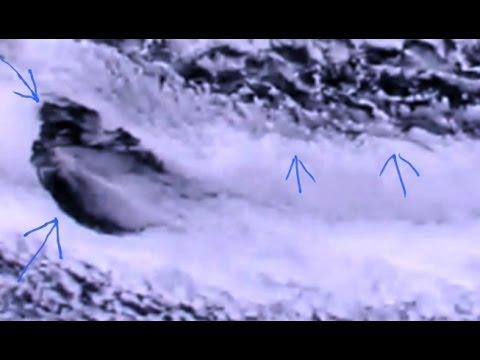 Massive Ufo proof Nasa ISS live feed 2015
