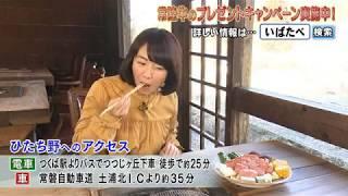「磯山さやかの旬刊!いばらき」(前10時20分ごろ)では,磯山さや...
