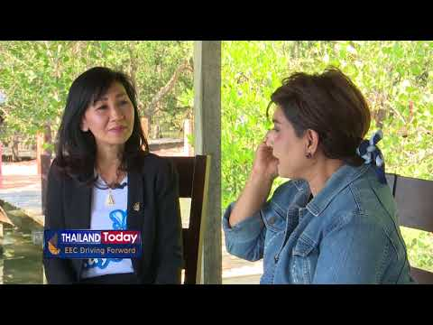 Thailand Today 052 EEC and tourism development plan for Rayong province (Dec 29, 17)