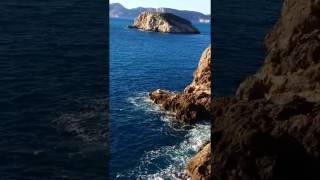 Mallorca Nature 7