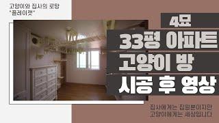 대전 아파트 고양이 방  - 플레이캣 고양이 투명 놀이…