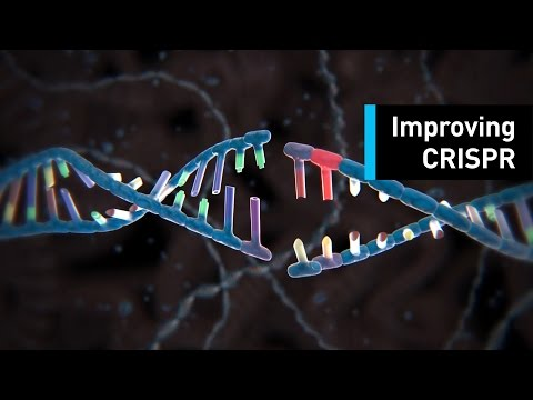 Targeted Gene Modification