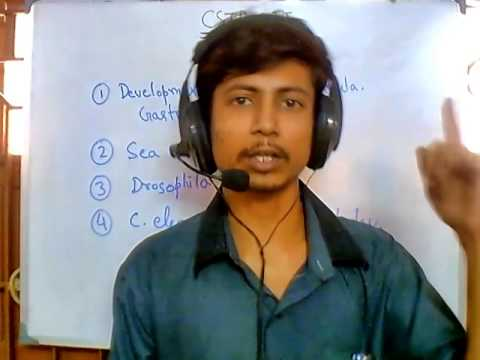CSIR UGC NET suggestions - develolmental biology