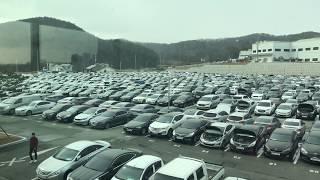 Масштабы автомобильных аукционов в Южной Кореи