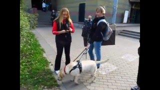 Съемка Юлии с Дианой скрытой камерой
