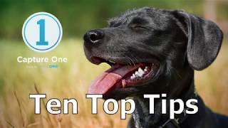 ten Top Tips for Capture One 12