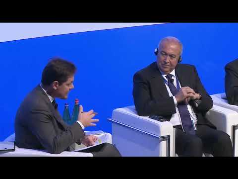 MED 2017 PLENARY - Economic Partnerships and Foreign Investm