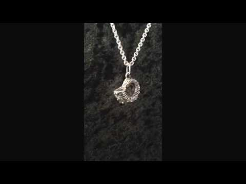Small Ammonite