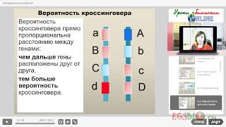 Сцепленное наследование. Закон Моргана. Видеоуроки биологии на egebio.ru