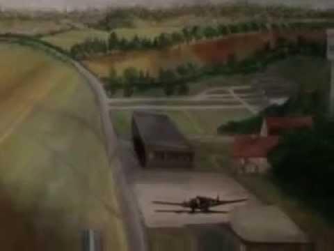 Aviation art : Ein bestelltes Bild / Ordered Painting