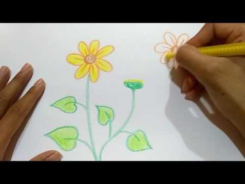 Mudah, Gampang. Menggambar Bunga Matahari untuk Anak