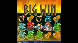 Casino Games - Big Fish