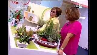 Repeat youtube video Sabahiyat 2M avec Houda JENNANE Déco  cuisine « verte »