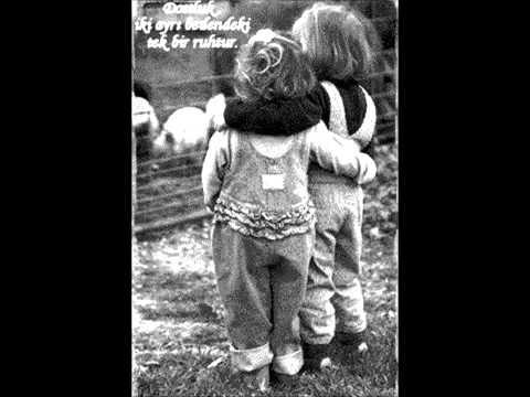 Dostluk Nedir