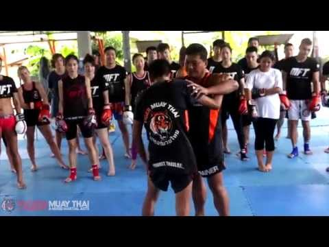 Muay Thai Knee Techniques