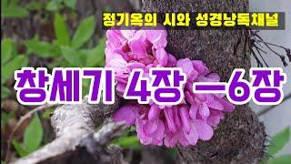 성경듣기,성경읽기,성경낭독.숲과 자연에서 (창세기 4장…