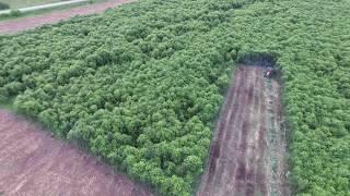 Мульчирование ДКР на сельскохозяйственных полях (съемка с квадрокоптера)