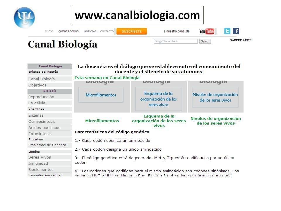 Estructura De Los Cromosomas